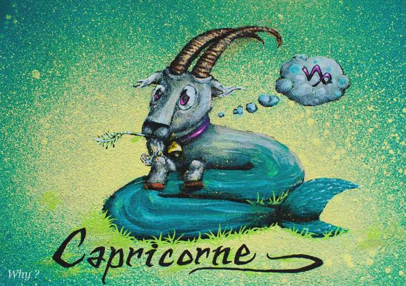 Capricorne compress